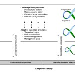 Adaptive transition_Figure2
